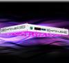 KIND LED - K5 Series XL1000 LED Grow Light (KINDXL1000)
