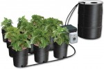 Ebb & Gro - 12 Grow Site System w/55 Gallon Reservoir - C.A.P.