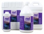 Aurora Innovations - Soul Synthetics Big Swell 5 Gal 2-5-3 (715345)