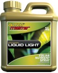 Dutch Master - Gold Liquid Light 1 Liter (719277)