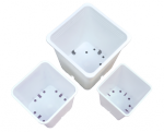 Gro Pro Premium White Square Pot 7in x 7in x 9in (724592)