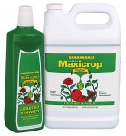 Maxicrop - Original Liquid Seaweed Gallon (718605)