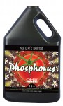Natures Nectar Phosphorous Gallon (719885)