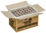 Planters Pride 1000 Pellet Refill Kit (714258)