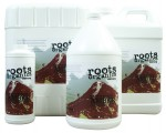 Roots Organics - Roots Ancient Amber Gallons 4/Cs (715070)